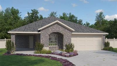 Hutto Single Family Home For Sale: 209 Seaholm Ln