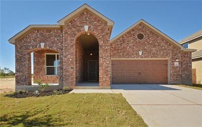 Kyle Single Family Home For Sale: 301 Jarbridge Dr