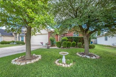 Hutto Single Family Home For Sale: 210 Watergate Way