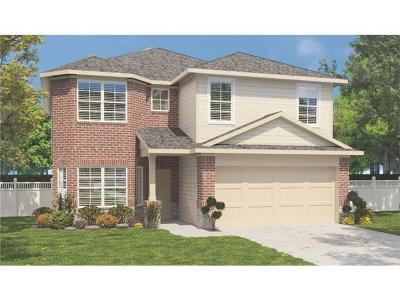 Buda, Kyle Single Family Home For Sale: 271 Coleto Creek Loop