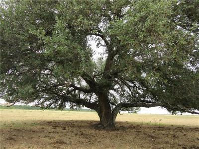 Bell County, Burnet County, Coryell County, Lampasas County, Llano County, McLennan County, Mills County, San Saba County, Williamson County Farm For Sale: 1399A County Rd 146 Grv