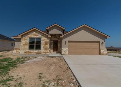 Williamson County Single Family Home Active Contingent: 329 Western Sky Trl