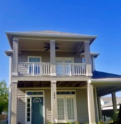 San Marcos Single Family Home For Sale: 244 Newberry Trl