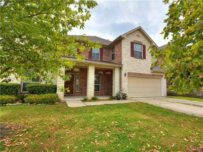 Kyle Single Family Home For Sale: 140 Firwood Dr
