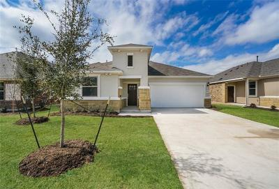 Round Rock Single Family Home For Sale: 6724 Catania Loop
