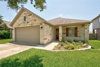 Travis County Single Family Home For Sale: 11013 Boundless Valley Dr