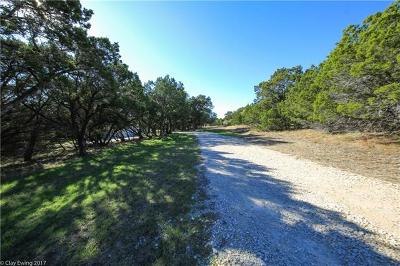 Wimberley Single Family Home For Sale: 100 Hoots Holler