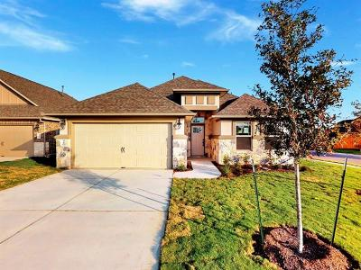 Kyle Single Family Home For Sale: 440 Coyote Creek Way