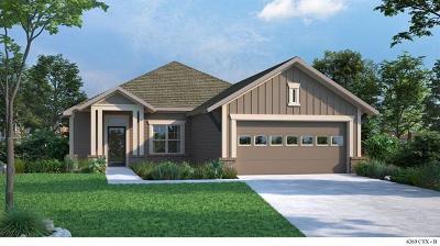 Buda Single Family Home For Sale: 756 Bridgestone Way