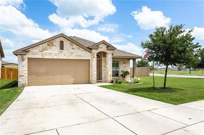 San Marcos Single Family Home For Sale: 102 Goldenrod Dr