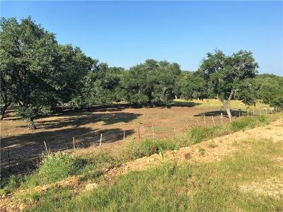 Georgetown Residential Lots & Land For Sale: 1204 Desaix Dr