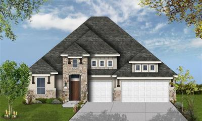 Round Rock Single Family Home For Sale: 3363 Vasquez Pl