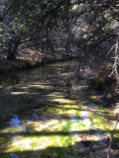 Austin TX Residential Lots & Land For Sale: $578,000