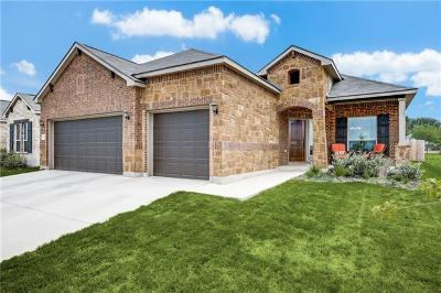 New Braunfels Single Family Home For Sale: 1711 Village Spgs