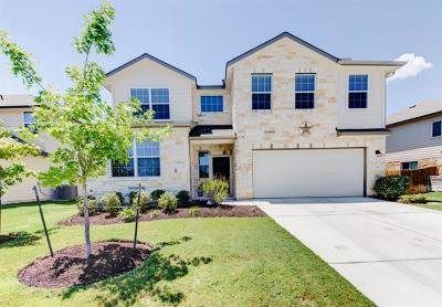 Georgetown Single Family Home For Sale: 204 Deep Creek Dr