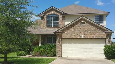 Austin Single Family Home For Sale: 11205 Persimmon Gap Dr