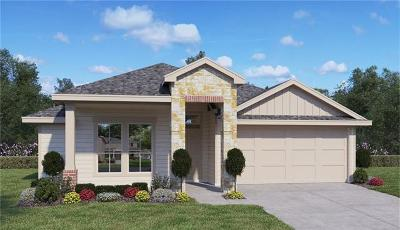 Hutto Single Family Home For Sale: 208 Garcitas Creek Ln