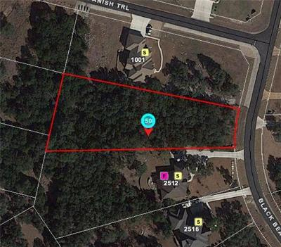 New Braunfels Residential Lots & Land For Sale: 2508 Black Bear Dr