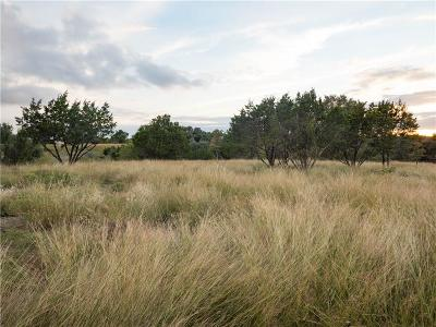 Marble Falls TX Residential Lots & Land For Sale: $85,000
