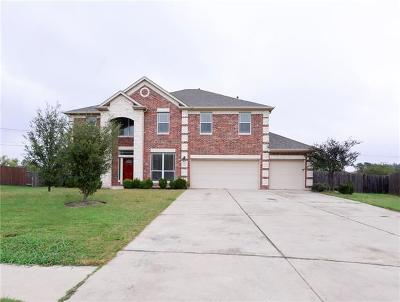 Pflugerville Single Family Home For Sale: 2917 Kerbey Heights Ct
