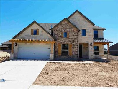 Liberty Hill Single Family Home For Sale: 304 Daniel Xing