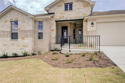Leander Single Family Home For Sale: 1036 Almeria Bend