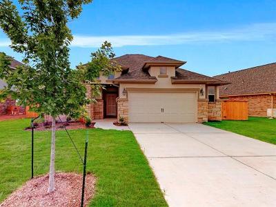 Manchaca Single Family Home For Sale: 12700 Iron Bridge Dr