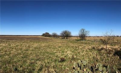 Bell County, Burnet County, Coryell County, Lampasas County, Llano County, Mills County, San Saba County, Williamson County, Hamilton County Farm For Sale: 1500 Williamson Rd