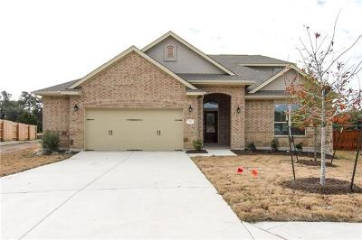 Georgetown Single Family Home For Sale: 541 Scenic Bluff Dr