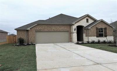Round Rock Single Family Home For Sale: 6833 Leonardo Dr