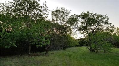 Lampasas Farm For Sale: 02 County Road 3930