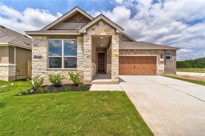 Kyle Single Family Home For Sale: 341 Jarbridge Dr