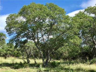 Blanco Farm For Sale: 2058 Lipan Apache Run