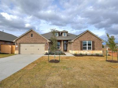 Kyle Single Family Home For Sale: 661 Cypress Forest Dr