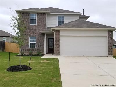 Kyle Single Family Home For Sale: 117 Hollis Cv