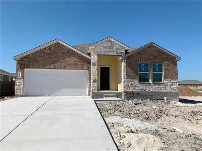 Hutto Single Family Home For Sale: 745 Carol Dr