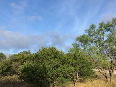 Dripping Springs Residential Lots & Land For Sale: Lot 09 Live Oak Canyon