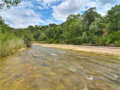 Leander Farm For Sale: River Run