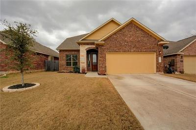 Travis County, Williamson County Single Family Home For Sale: 10616 Desert Willow Loop