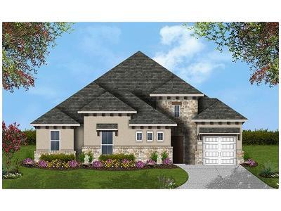 Georgetown Single Family Home For Sale: 221 Lake Rim Cir