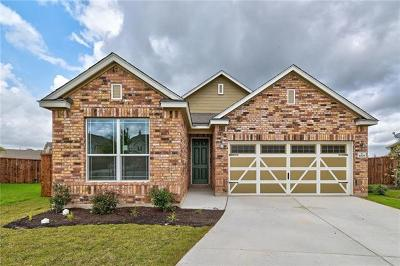 Hutto Single Family Home For Sale: 1009 Danish Cv