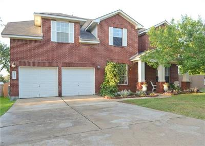 Single Family Home For Sale: 1417 Quicksilver Cir