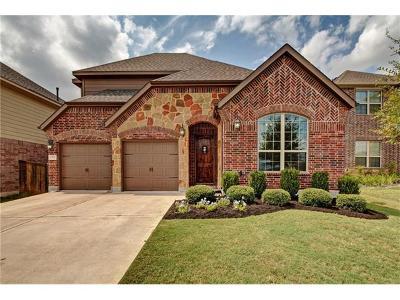 Austin Single Family Home For Sale: 9700 Alex Ln