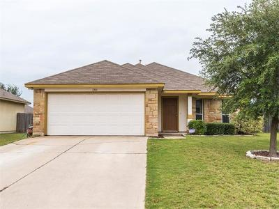 Kyle Single Family Home For Sale: 1204 Twin Cv