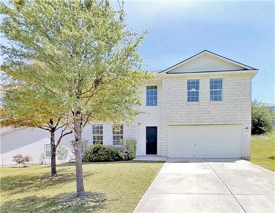 Kyle Single Family Home For Sale: 256 Dandelion Loop