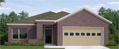Buda Single Family Home For Sale: 444 Bridgestone Way