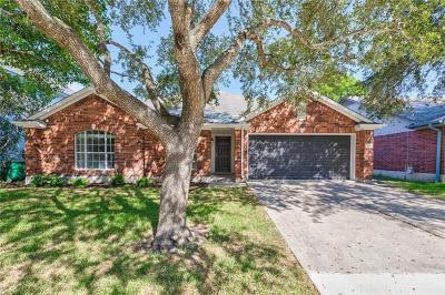 Pflugerville Single Family Home For Sale: 16902 Isle Of Man Rd