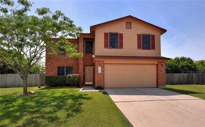 Kyle Single Family Home For Sale: 203 Hunter Rex Cv