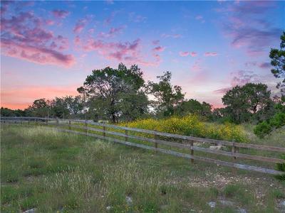Austin Farm For Sale: 14001 Bear Creek Pass