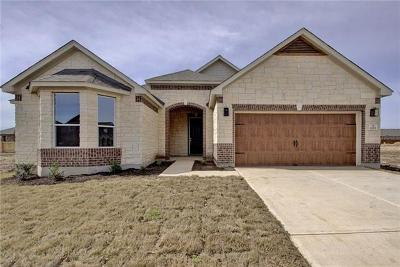Leander Single Family Home For Sale: 1029 Plano Ln